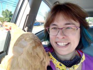 Chicken_Rescue